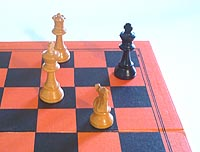 checkmate, the objective of a chess game