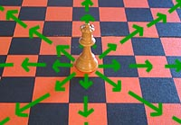 the move of the chess queen