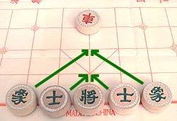 neat symmetry of the advisors and elephants in xiangqi (Chinese chess)