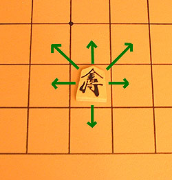 the move of the gold general in shogi (Japenaese chess), a unique move among major chess variants