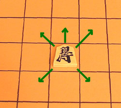 the move of the silver general in shogi (Japenese chess), a familiar move in south-east Asian chess variants